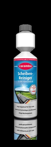 AKTION Sommer-Scheibenreiniger 250ml 1:100